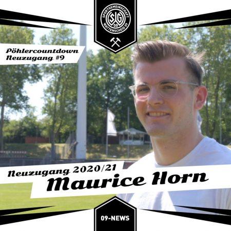 Maurice Horn