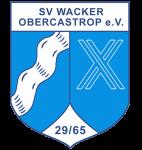 svwologo-284x300